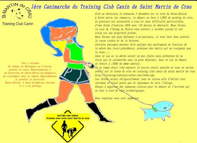 1ère canimarche du training club canin de saint martin de crau Affich11