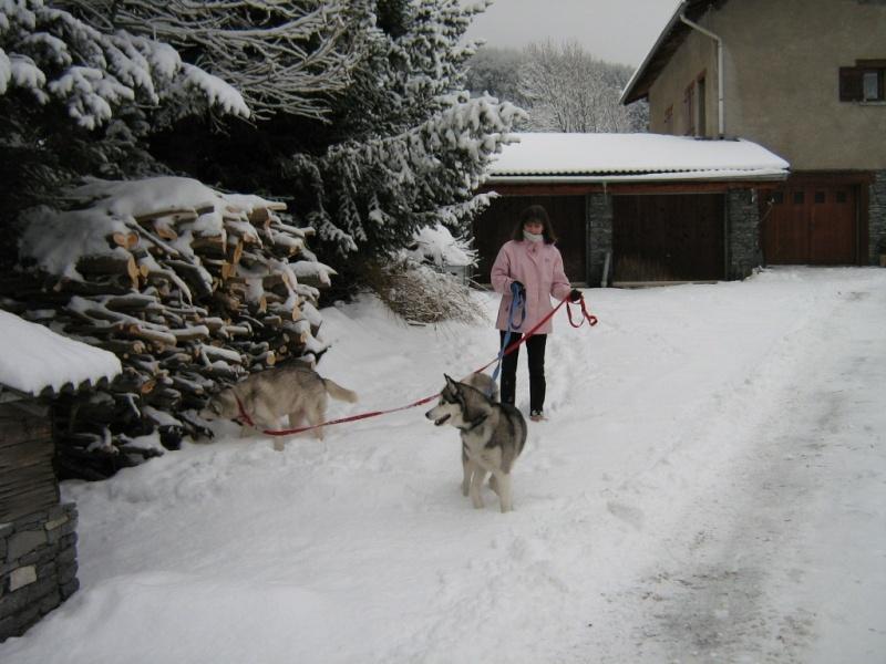 Baltik et Angie en vacances à BRAMANS (savoie) Janvier 2010 Img_5810