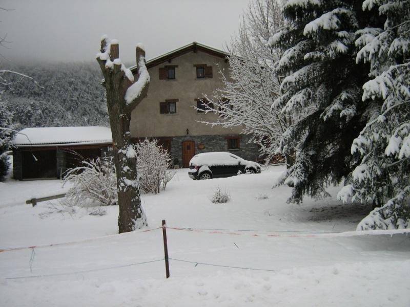 Baltik et Angie en vacances à BRAMANS (savoie) Janvier 2010 Img_5811