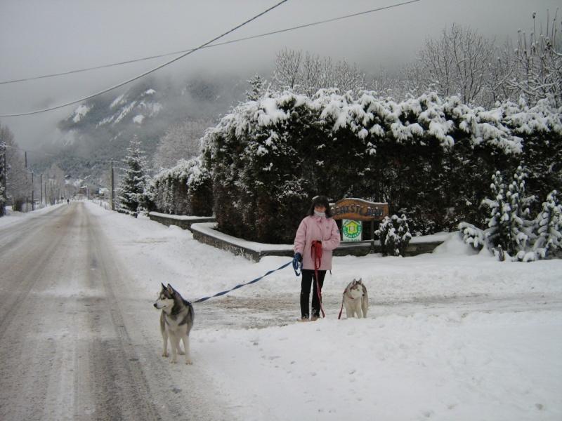 Baltik et Angie en vacances à BRAMANS (savoie) Janvier 2010 Img_5813