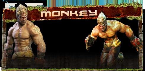 Galerie de Monkei Monkey10