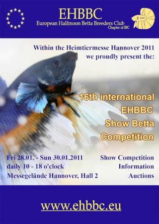 Hannovre, Allemagne, EHBBC, 28-30.01.2011 Hanove13
