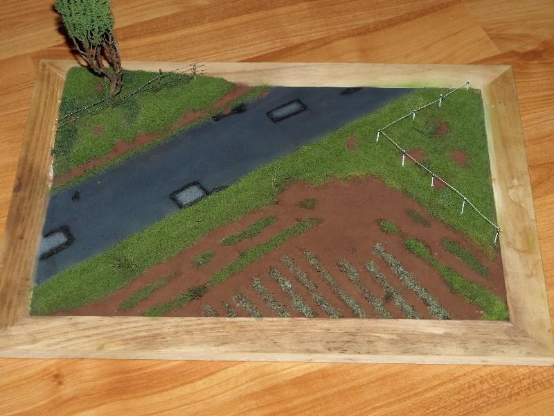 Construction d'un diorama : une route de campagne. C'est fini. - Page 2 P1016431