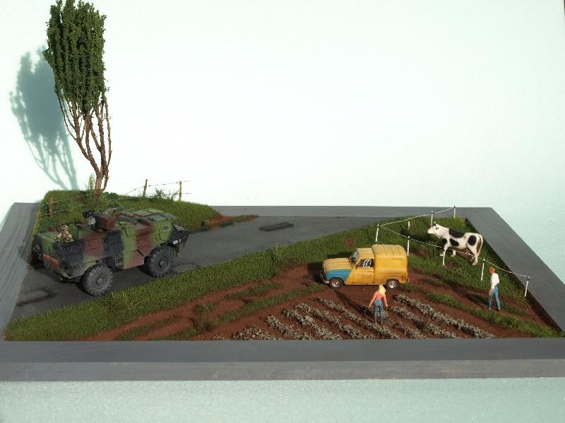 Construction d'un diorama : une route de campagne. C'est fini. - Page 3 P1017253
