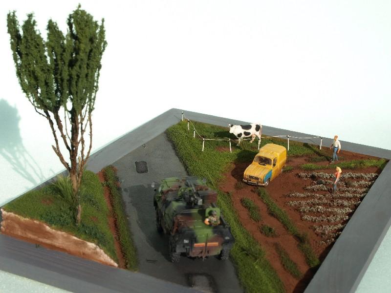 Construction d'un diorama : une route de campagne. C'est fini. - Page 3 P1017255