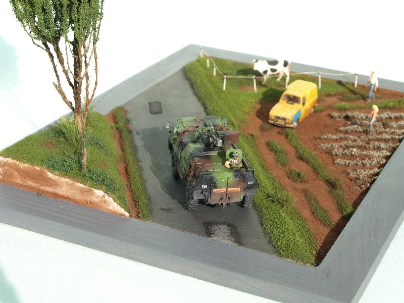 Construction d'un diorama : une route de campagne. C'est fini. - Page 3 P1017256