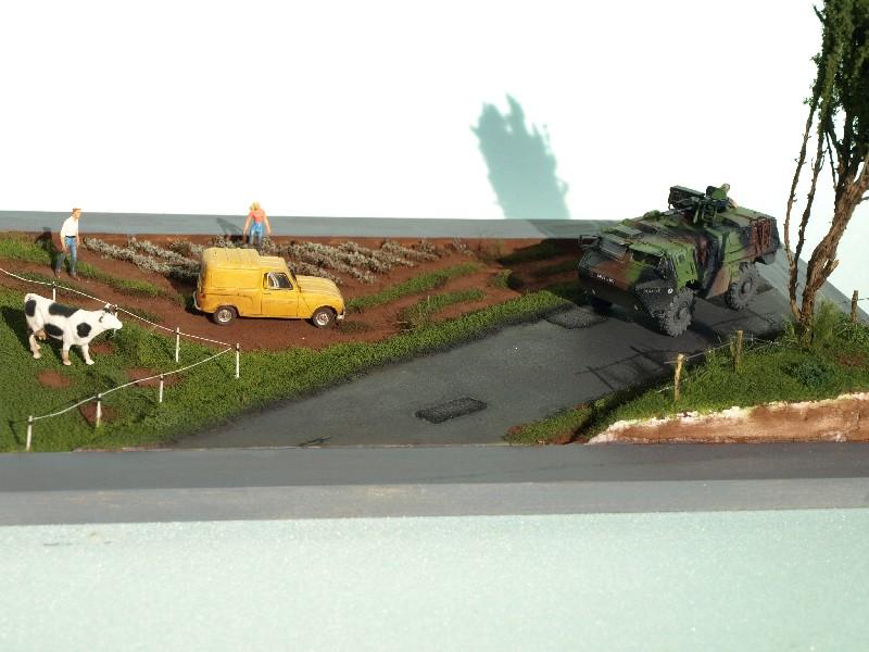 Construction d'un diorama : une route de campagne. C'est fini. - Page 3 P1017257
