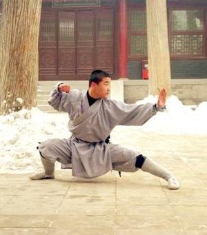 Définition d'un Art Martial, du bushido et du budô Shaoli10