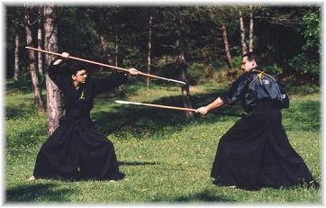 Origine des Samouraïs Yari110