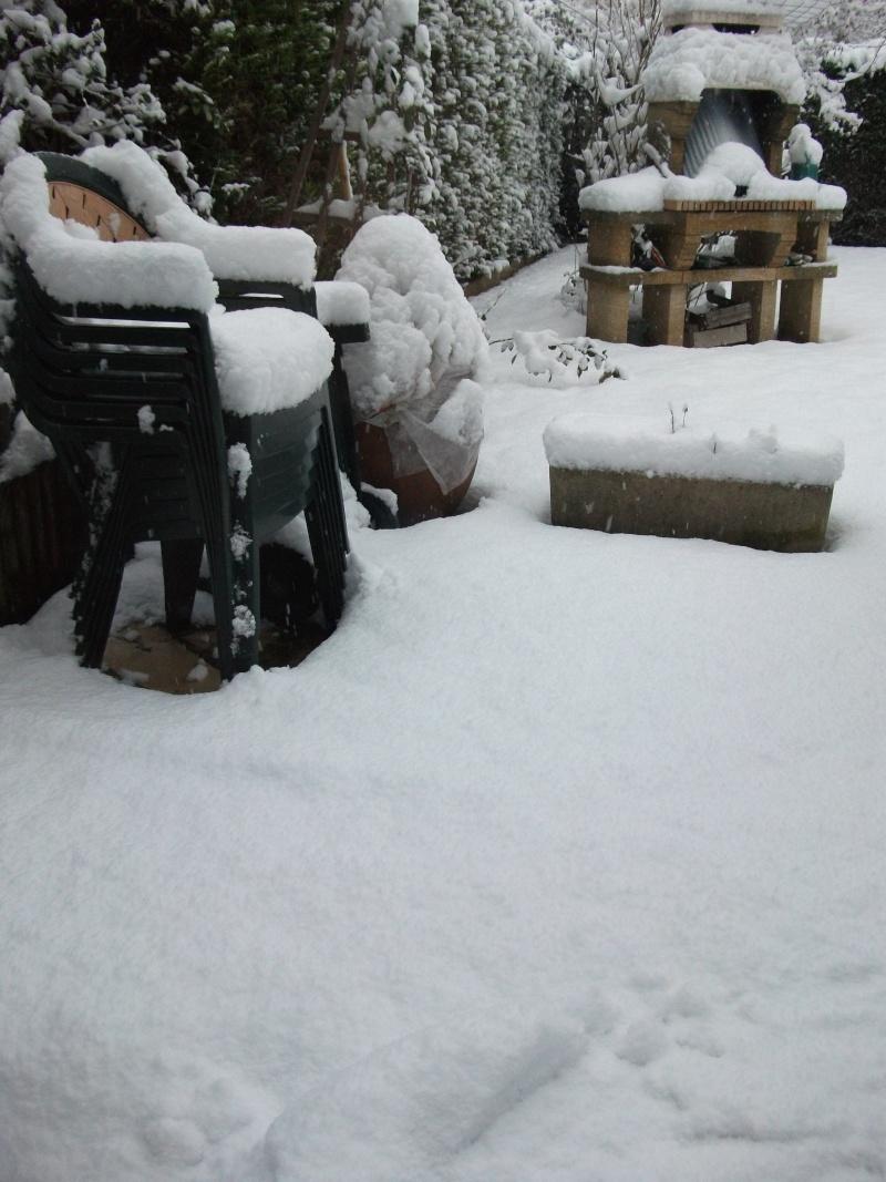 Vos photos sous la neige !!! Dscf0211