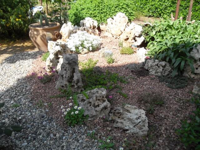 Petite rocaille en cours de réalisation Sdc10235