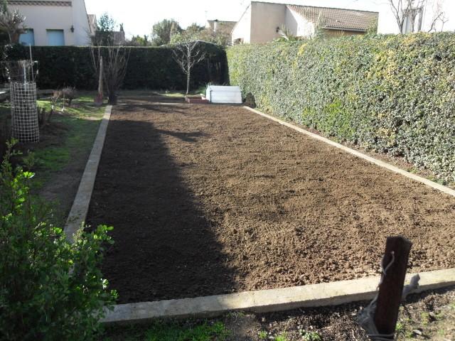 nouvelles plantations de légumes - Page 3 Sdc11015