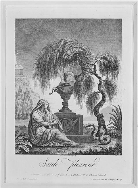 Portraits cachés de Marie-Antoinette et Louis XVI ou images séditieuses  76-00911