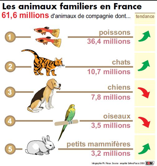 Trafic d'animaux !!! Animau10