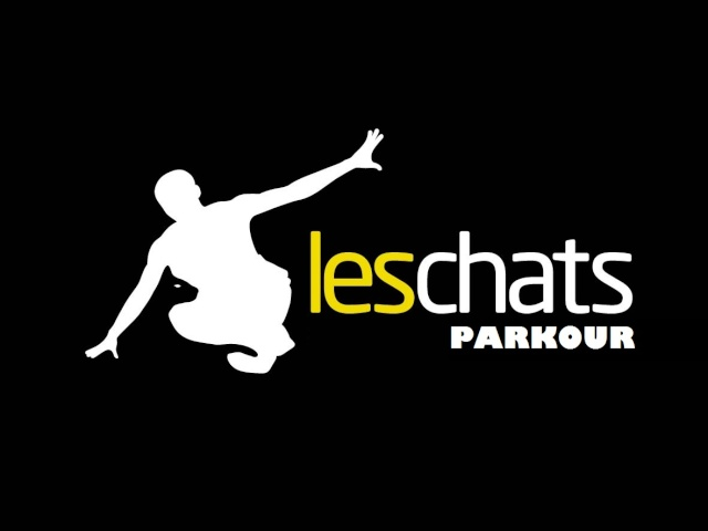 Les Chats.co Foro Parkour