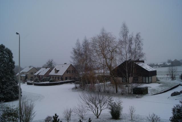 Tempète de neige: chevaux et paysage Dsc00417