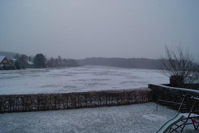 Tempète de neige: chevaux et paysage Dsc00418