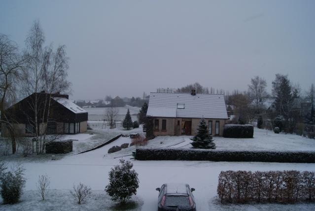 Tempète de neige: chevaux et paysage Dsc00419