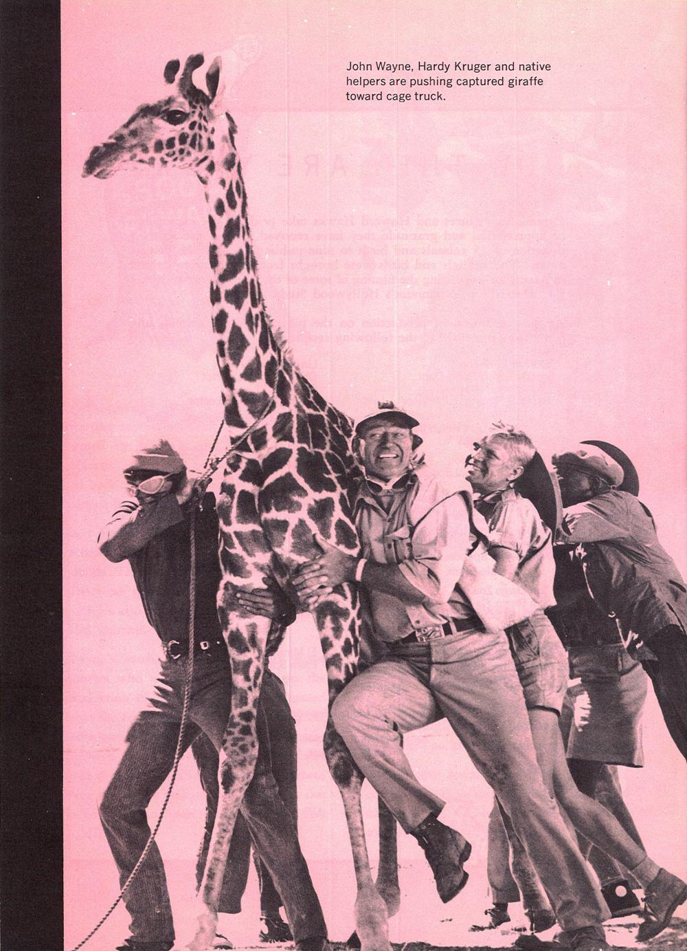Hatari -1962 Atari_51
