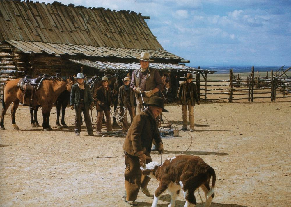Les cowboys - The Cowboys - 1972 Duke_154