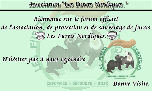 Groupe Membre du Forum. 09093010
