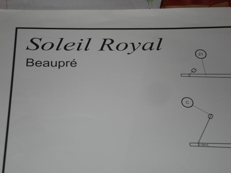 le soleil royal( nouvelle photos mise a jour 30/11) Dsc01528