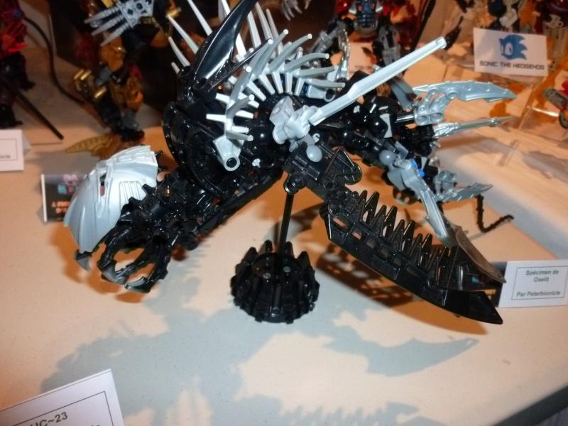 [13/11/10] Bionicle Legends au Festi'Briques 2010. - Page 3 P1000524