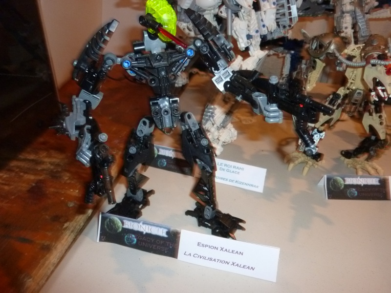 [13/11/10] Bionicle Legends au Festi'Briques 2010. - Page 3 P1000536