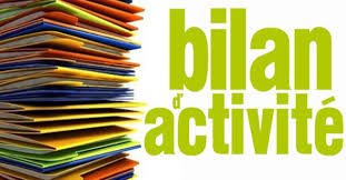 « Bilan » de notre Collectif Solhand Bilan_10