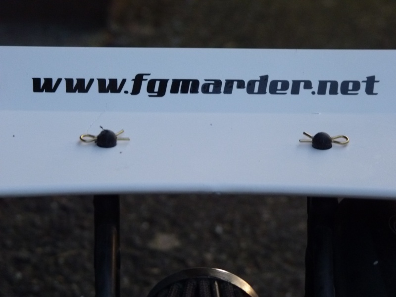 marder florent67 P1000717