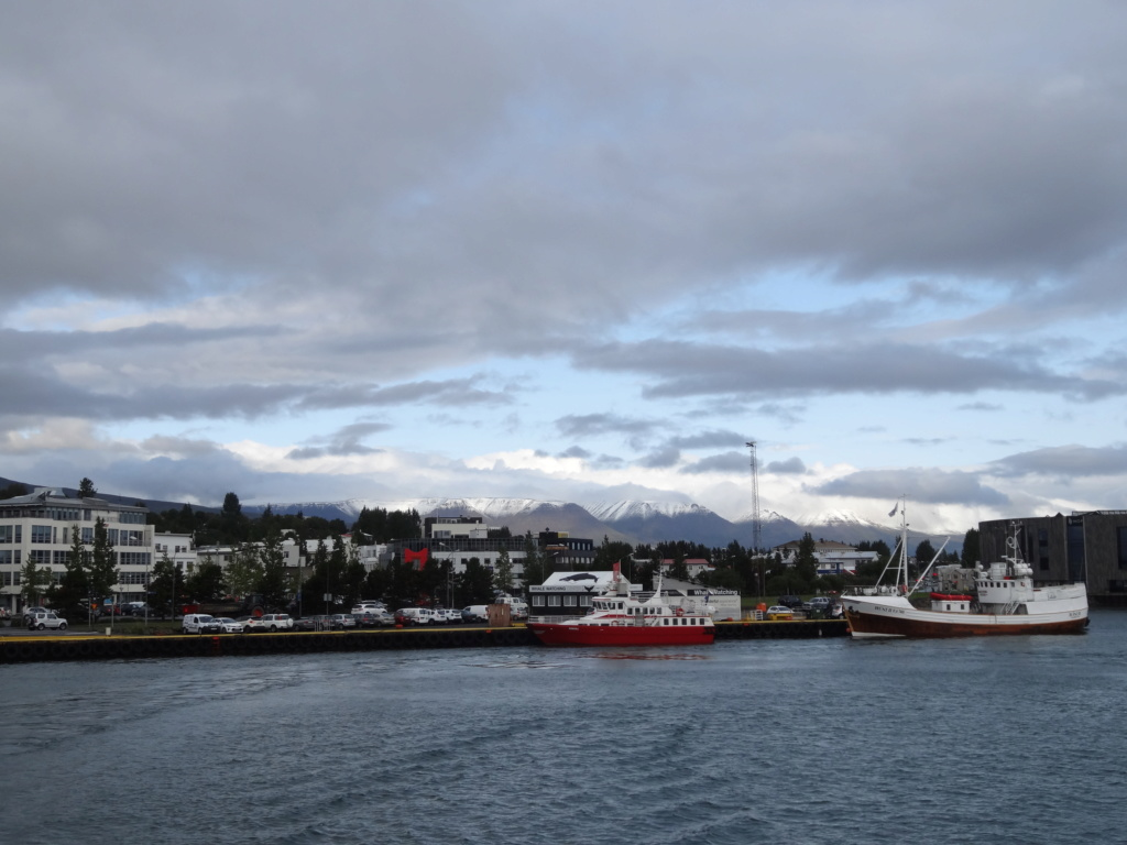 Islande 2019 Dsc00716