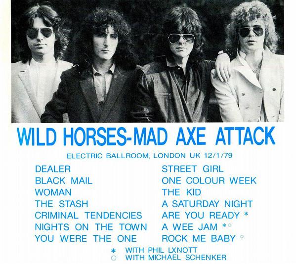 WILD HORSES Wild_h11