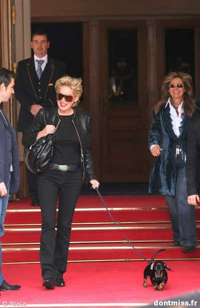 Sharon Stone et Puppy Sharon10