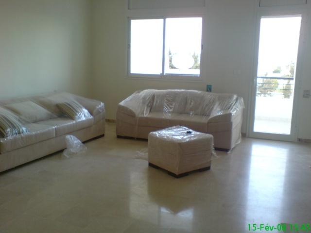 besoin d'aide pour la peinture des murs su salon salle à manger 09021311