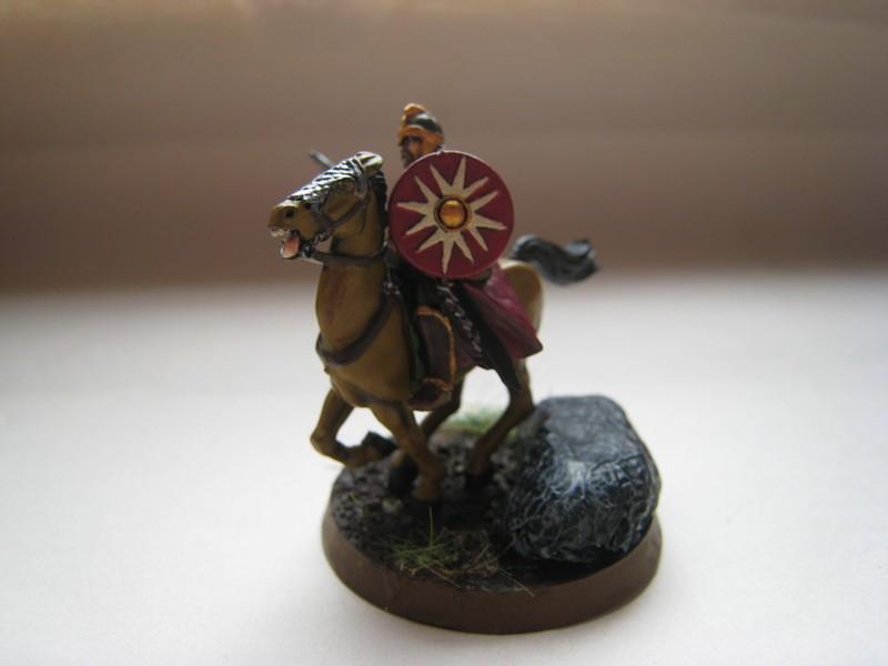 Cavalier du Rohan Img_1631