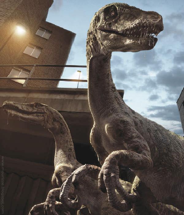 Raptor - Seite 2 Raptor10