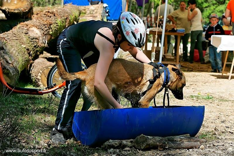 Djin, le footbike et la compet...ca donne ca !!!! _z7r1311