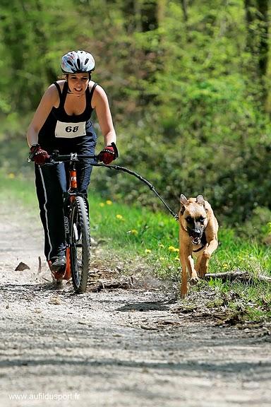 Djin, le footbike et la compet...ca donne ca !!!! _z7r1411
