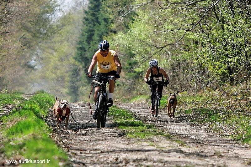Djin, le footbike et la compet...ca donne ca !!!! _z7r1414