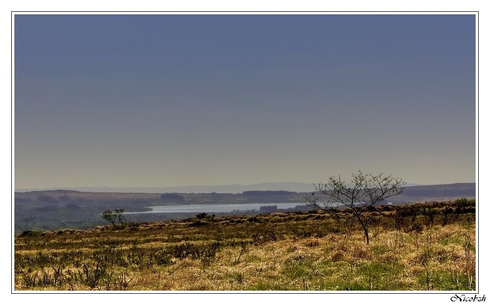 Desert breton Desert10