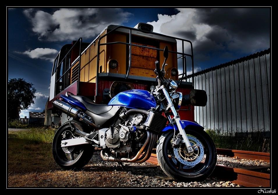 Shootage moto Hornet11