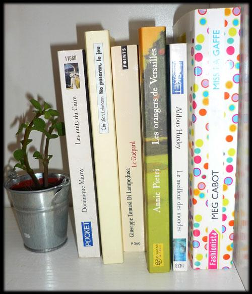 Les livres d'Audrey Romans10