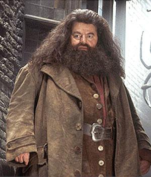Rubeus Hagrid Hagrid10
