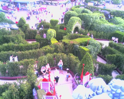 Alice's Curious Labyrinth à Disneyland Paris Labyri10