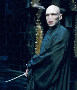 Lord Voldemort Volder10