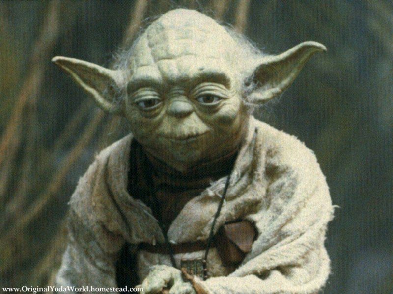 Maître Yoda Yoda2210