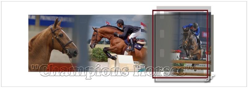 Champions Horses