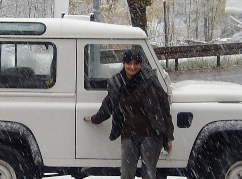 Bonsai sotto la neve Alim0010