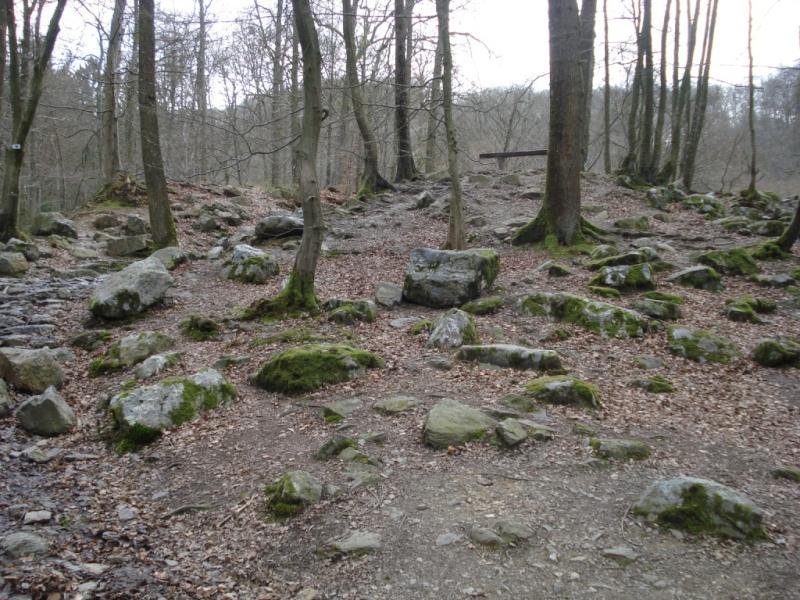 La vallée du Ninglinspo Promon10