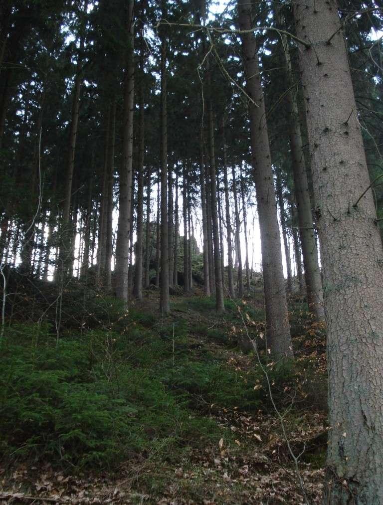 La vallée du Ninglinspo Roches10
